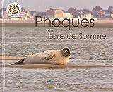 Phoques en baie de Somme...