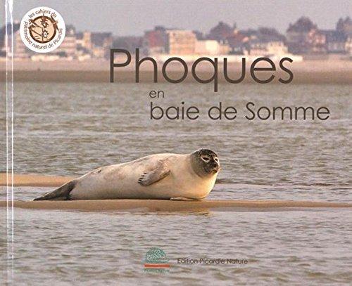 Phoques en baie de Somme par Régis Delcourt