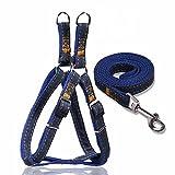 TOME Bequemer Hundegeschirr Gürtel 2 in1 Kit, Abenteuer Haustier Weste Harness für Training und Walking. Starkes Denim Material (Traction Belt Set)
