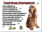 Blechschild / Warnschild / Türschild - Aluminium - 15x20cm 'Eigentumsrechte' Motiv: Cocker Spaniel braun sitzend (01)