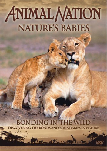 animal-nation-natures-babies-bonding-in-the-wild-dvd
