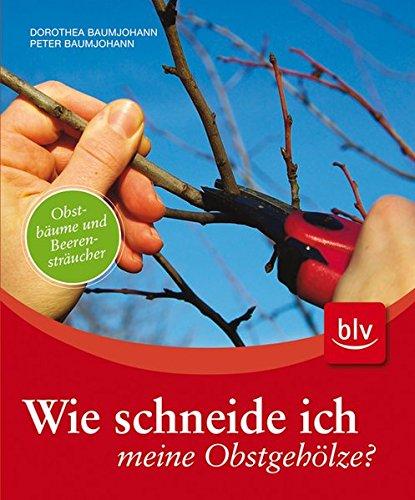 Wie schneide ich meine Obstgehölze?: Obstbäume und Beerensträucher