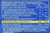 PowerBar Casein Whey Protein-Pulver – Protein Plus 80% – Eiweißpulver ohne Farbstoffe und Aspartam – Protein Shake – 500g Stracciatella