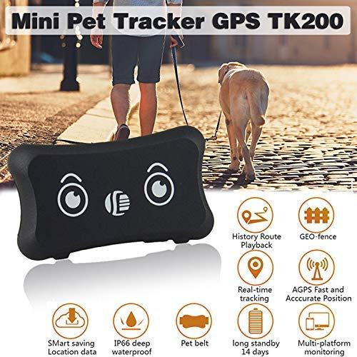 Autopmall Solar GPS Tracker Pet mucca Tracker GSM GPS localizzatore impermeabile IP66/app gratuita web dispositivo di tracking Geofence