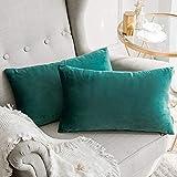 MIULEE Housse de Coussin en Velours Décoratif Canapé Home Decor Taie d'oreiller Super Doux Decoration Maison Salon Chambre pour Canapé Clic Clac 30 x 50 cm 12'x20',2 pièces Vert Turquoise