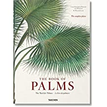 FP-Martius. The Book of Palms