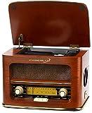 Nostalgie Kompaktanlage | Retro Radio Holz mit CD Player | USB Wiedergabe | Musikanlage Retro Style | Stereoanlage | Fernbedienung | Küchenradio | Vintage Optik | Nostalgieradio | integr. Lautsprecher -