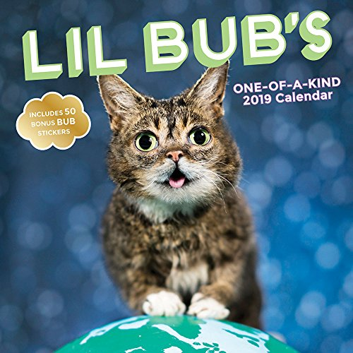Lil Bub's One-of-a-Kind 2019 Wall Calendar