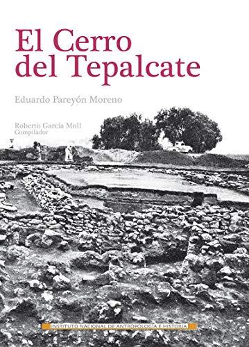 El cerro del Tepalcate (Génesis) (Spanish Edition)