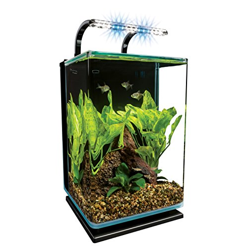 Marineland Contour Glass Aquarium Kit with Rail Light, 5-Gallon by MarineLand -