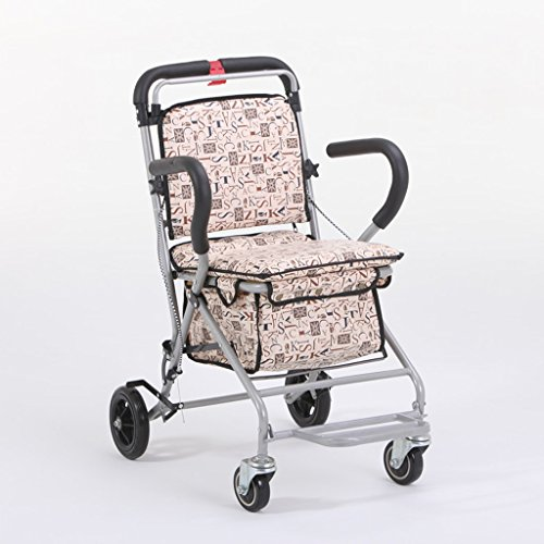 Kinderwagen Ältere Warenkorb kann Trolley von der Alte Mann, um das Auto zu kaufen ein Auto mit Ein Sitz Rad Rücken