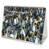 Pinguinzauber DIN A5 Kalender/Tischkalender 2020 Pinguin Geschenk-Set: Zusätzlich 1 Gruß- und 1 Weihnachtskarte - Seelenzauber