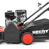 HECHT 5654 Rasen-Lüfter Motorvertikutierer (3,5 PS, 38 cm Arbeitsbreite, 6-fache zentrale Höhenverstellung, 40 Liter Fangkorb) - 4