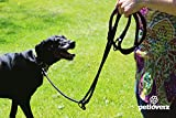 4-fach verstellbare Hundeleine | 2,80m lang | Doppelleine / Laufleine / Langlaufleine | geflochten | schwarz | Nylon | Leder-verstärkte Nähte | eingenähte Reflektoren | PETLOVERZ - 6