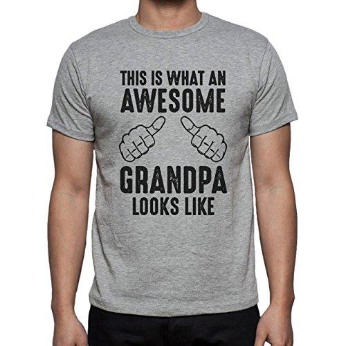This Is What An Awesome Grandpa Looks Like Black T Rex Herren T-Shirt Grau