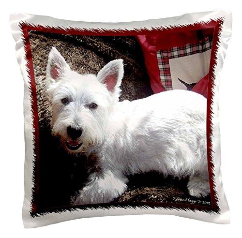 3drose PC _ 39514_ 1West Highland Weiß terrier-pillow Fall, 16von 40,6cm (Decke West Highland)