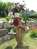 Blumenständer aus Holz 70cm mit 4 Ablagen Kaffeebaum Blumen