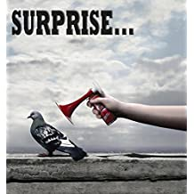 SURPRISE...: mixed image (English Edition)