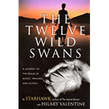 The Twelve Wild Swans: A Journey to the Realm of Magic, Healing, and Action (English Edition)