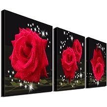 Amazon Fr Tableau Rose Rouge