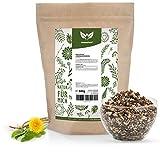NaturaForte Löwenzahnwurzel-Tee, geschnitten 500g | Löwenzahn-Tee Lose | Arzneimittel-Qualität | Traditioneller Kräutertee | 100% Natürlich & ohne Zusätze | Getrocknet | Laborgeprüft