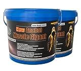 New Anabol Muscle Gigant! 2x2,27kg Eiweiß Anabol Muskelaufbau Gainer BCAA Masse Geschmack Banane