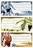 Herma 5598 Buchetiketten Schule, Motiv Fussball, Inhalt: 9 Heftetiketten für Schulhefte, Format 7,6 x 3,5 cm