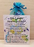 Gin Lovers Hangover Survival Kit - Just Add Gin -Unique Fun Novelty Gift & Card All In One
