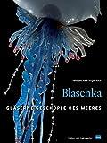 Blaschka: Gläserne Geschöpfe des Meeres