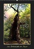 Das Seelenlicht der Bäume (Wandkalender 2019 DIN A2 hoch): Uralte Baumriesen mit ihrer Ausstrahlung (Monatskalender, 14 Seiten ) (CALVENDO Natur)