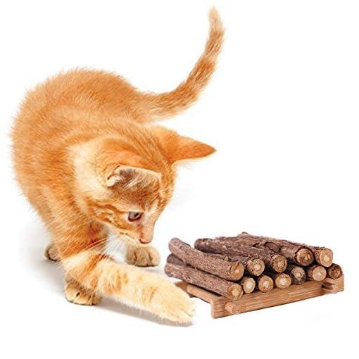 6 Bastoncini Gatto Giochi Per Gattigioco Gatto Catnip Matatabi