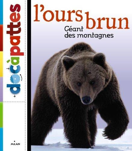 L'ours brun par Eric Baccega