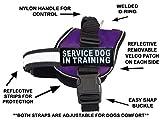 Doggie Stylz Servcie Hund in Training Vest Nylon Hunde Harness. Kauf Kommt mit 2Reflektierenden...
