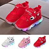 Kids Outdoor Sport Shoes, Familizo Fashion Toddler Baby Girls Led Light Shoes Boys Soft Luminous Outdoor Sport Shoes Casual Shoes for Home Garden Holiday