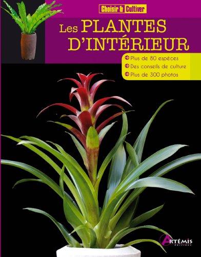 les-plantes-dinterieur