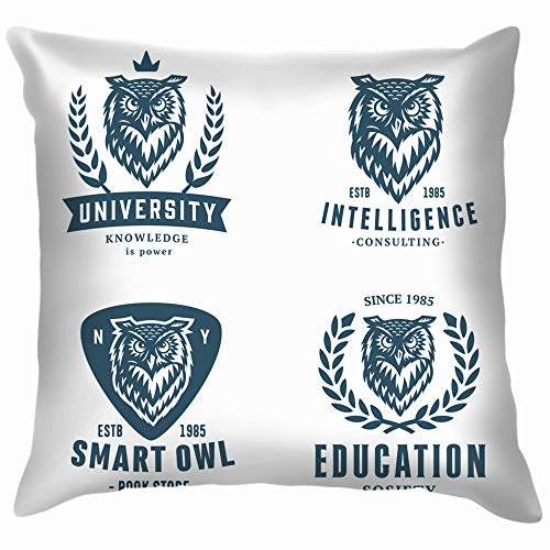 sign Element Animals Wildlife Owl Throw Pillow Case Cushion Cover Pillowcase Watercolor for Couch 18X18 Inch ()