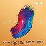 D'Addario Ascenté - Corda La per violino, scala 1/4, tensione media