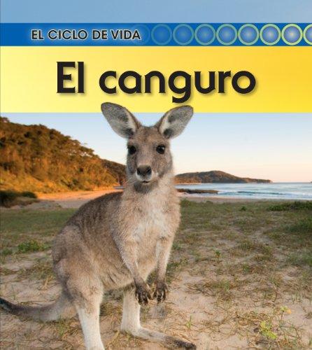 El canguro / Kangaroo (El ciclo de vida / Life Cycle of a)