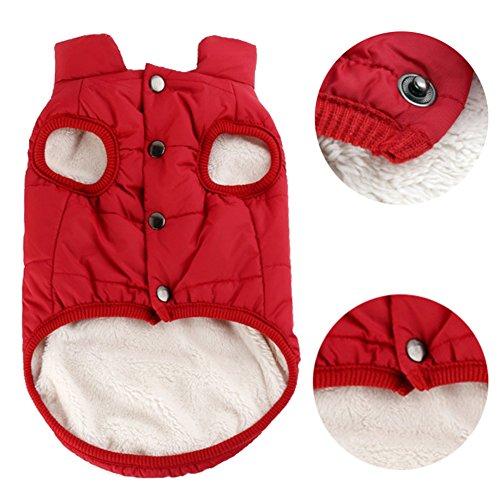 Woopower warmer Hundemantel, winddichte Welpenweste Jacke Haustier Winter Kleidung für kleine/mittlere/große Hunde, Größen: XS-3XL (Halloween-hund Pullover)