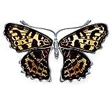 Amazing ambre et argent Sterling 925 et pendentif en forme de Papillon Rouge amiral Broche