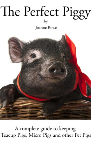 The Perfect Piggy: A guide to keeping Teacup Pigs, Micro Pigs and other Pet Pigs (English Edition) (Pig Pet Miniature)