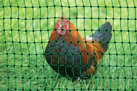 *grüner Gartenzaun 50 m x 112 cm Hühnerzaun + 14 Pfähle Hühner-Zaun Geflügelzaun Garten*