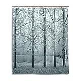 Bad Vorhang für die Dusche 152,4x 182,9cm, Schnee Natur Landschaft Mist Life Baum, Polyester-Schimmelfest-Badezimmer Vorhang