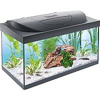 Tetra Regular Starter Line Aquarium Set Completo con Illuminazione a LED Stabile Acquario in Vetro da 54 Litri con Tecnologia, Linea di avviamento Regolare, Multicolore, Unica