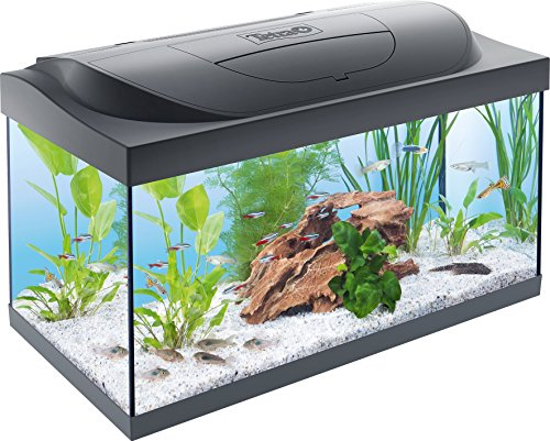 Tetra, Acquario Con Led, 60X30, 54 Lt, Antracite