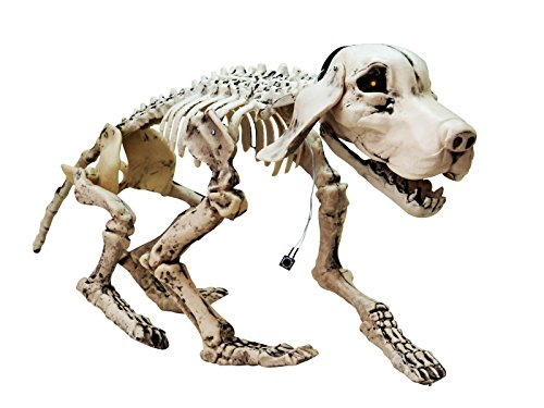 Halloween Skelett Hund BALTO mit Soundfunktion, LED, 71 x 25 x 40 cm - Knochen Köter / Friedhof Deko - showking
