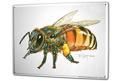 LEotiE SINCE 2004 Blechschild XXL Kinderzimmer Biene Honig