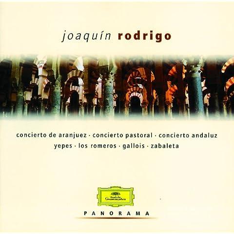 Rodrigo: Entre olivares - Allegro - Allegro ma non troppo - Allegro gracioso - Più tranquillo