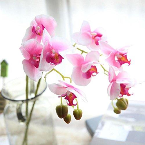 Dragon868 Künstliche Seide Gefälschte Blumen Phalaenopsis Hochzeit Bouquet Party Wohnkultur (Rosa, Künstliche Blume) (Wohnkultur)
