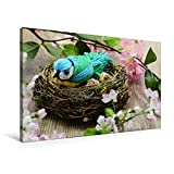 Premium Textil-Leinwand 90 x 60 cm Quer-Format Gebastelte Blaumeise aus Wolle in einem Nest. | Wandbild, HD-Bild auf Kei